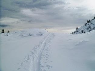 Sulla pista verso malga Agareit