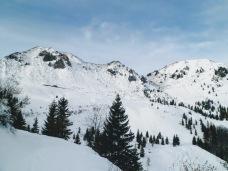 A sx monte Arvenis; a dx cima Tamai