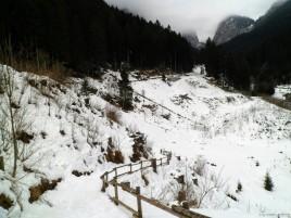 Il sentiero che scende verso il torrente Fleons